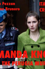 Amanda Knox and the Perugia Murder